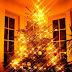 YENİ YIL AĞAÇLARI:) (Merry Christmas)