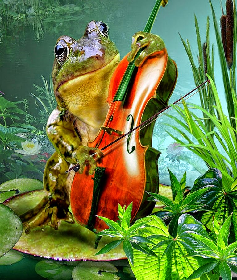 pinturas-decorativas-de-sapos-con-instrumentos-musicales