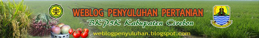 Weblog Penyuluhan Pertanian