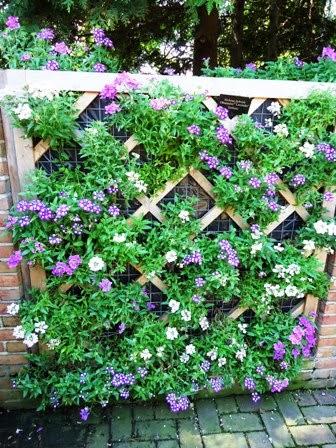 Indoor Gardening Plants Indoor gardening plants best for vertical garden workwithnaturefo