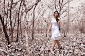 Rashi khanna sizzling photos from joru-thumbnail-9