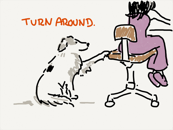 dogs asks turn around
