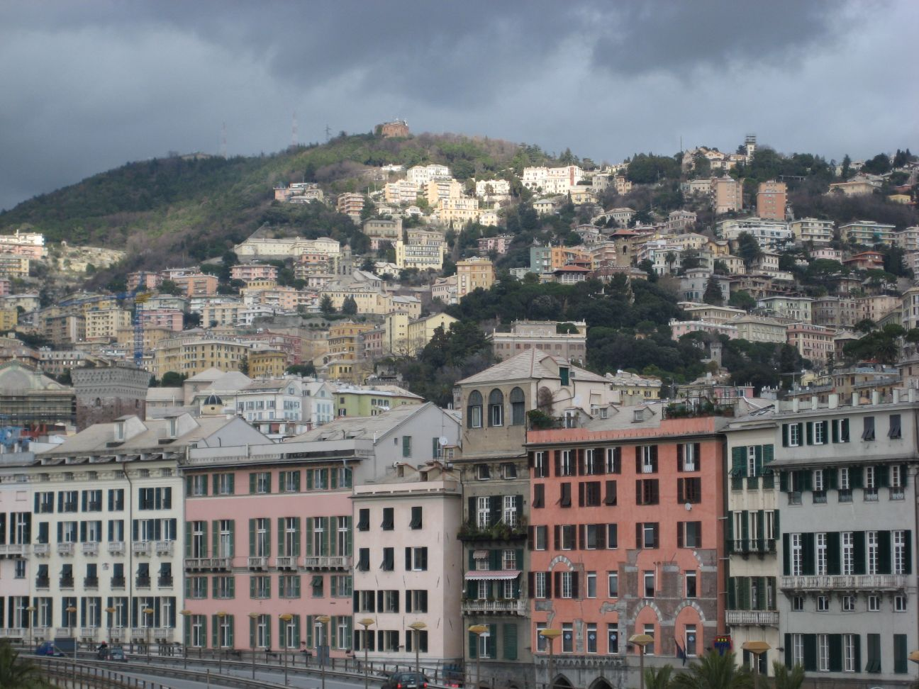 genoa - photo #12