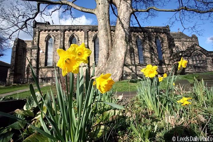 Churchyard Spring Flowers Yeadon