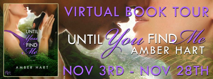 Nov 3rd - Nov 28th