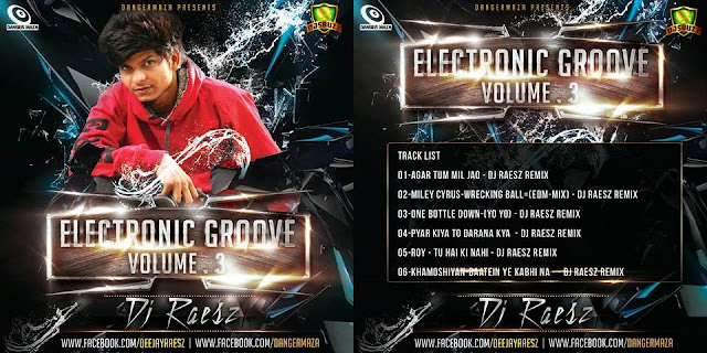 ELECTRONIC GROOVE VOL.3