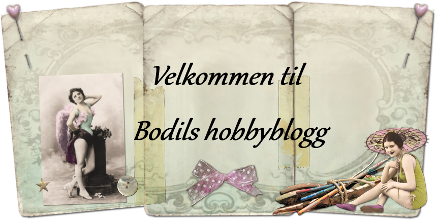  Bodils hobbyblogg