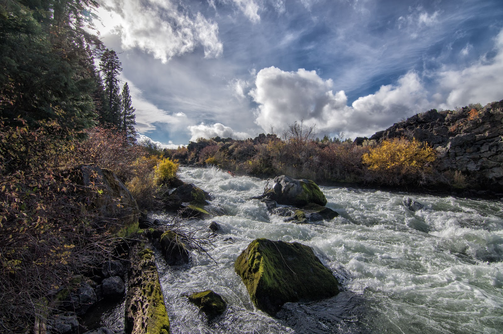 Wheels water deschutes river or dillon falls to for Bob fish west bend