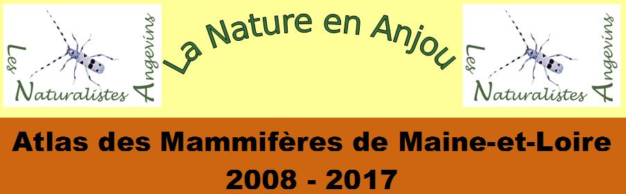 Atlas des Mammifères de Maine-et-Loire