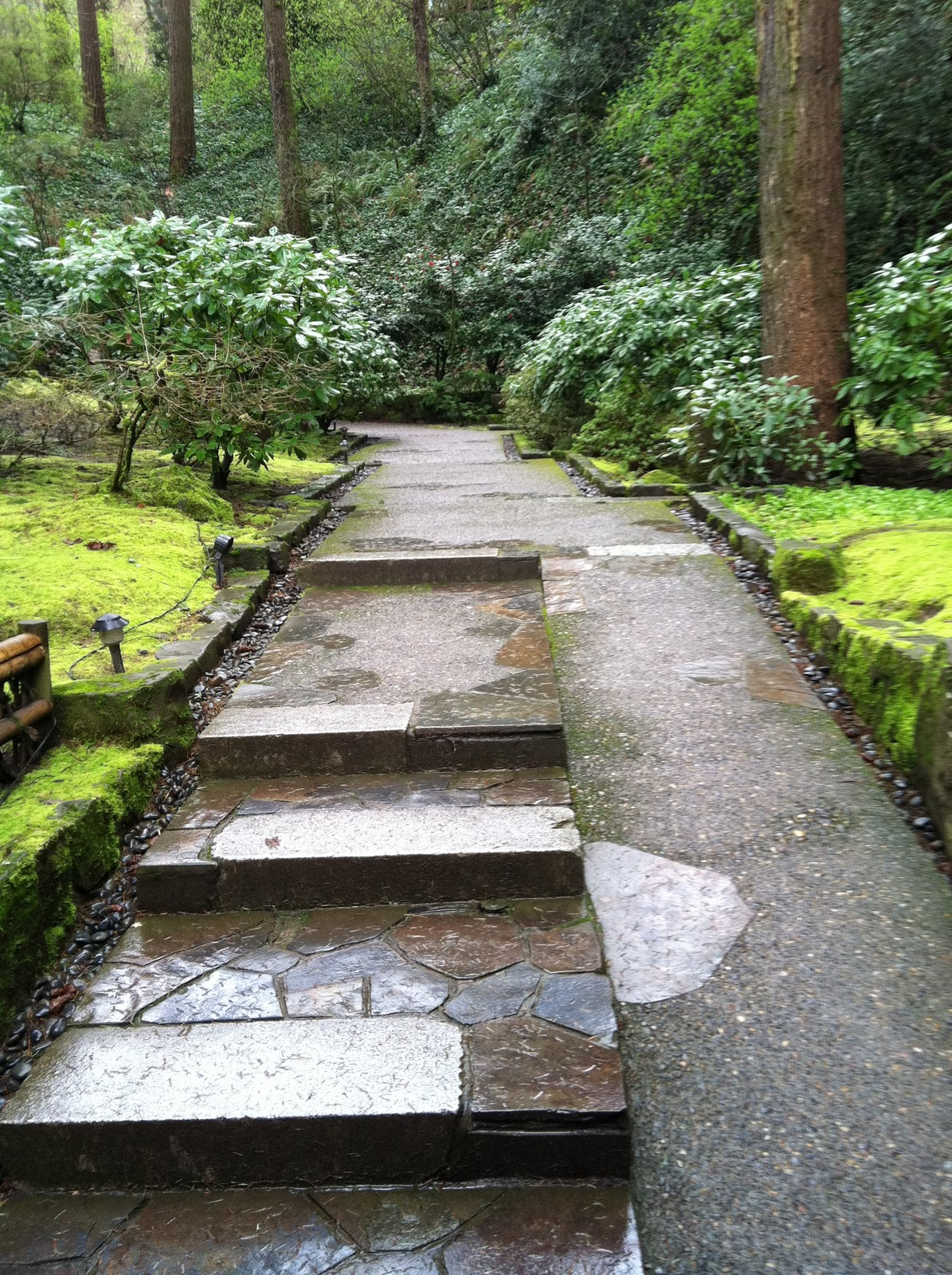 Stone U0026 Asphalt Inclining Pathway