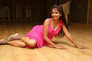 Actress Kaveri Latest  Pictureshoot Gallery in Pink Dress  007.jpg