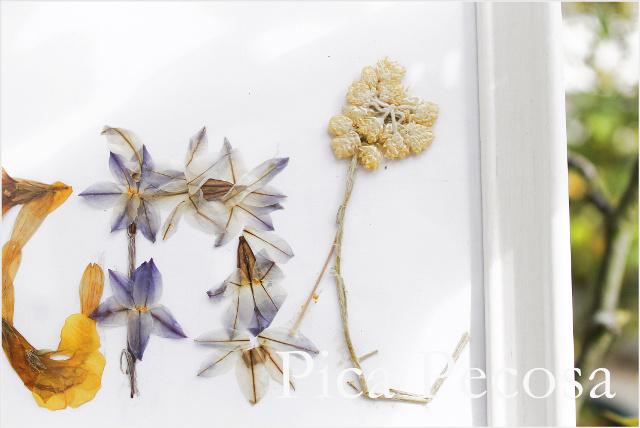 cuadro-con-nombre-hecho-flores-secas-prensadas-diy-07