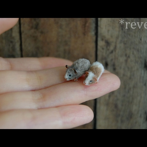 21-Guinea-Pigs-ReveMiniatures-Miniature-Animal-Sculptures-that-fit-on-your-Hand-www-designstack-co