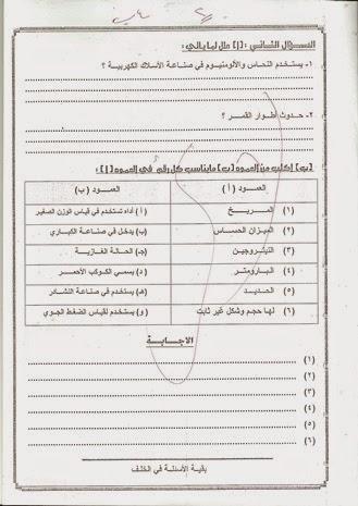 امتحانات كل مواد الصف الرابع الابتدائي الترم الأول 2015 مدارس مصر حكومى و لغات راب%D