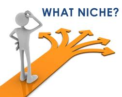 Select a niche to blog about