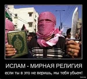 Мусульмане похвастались своей ...