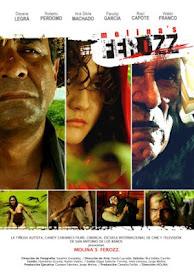 Molina's Ferozz