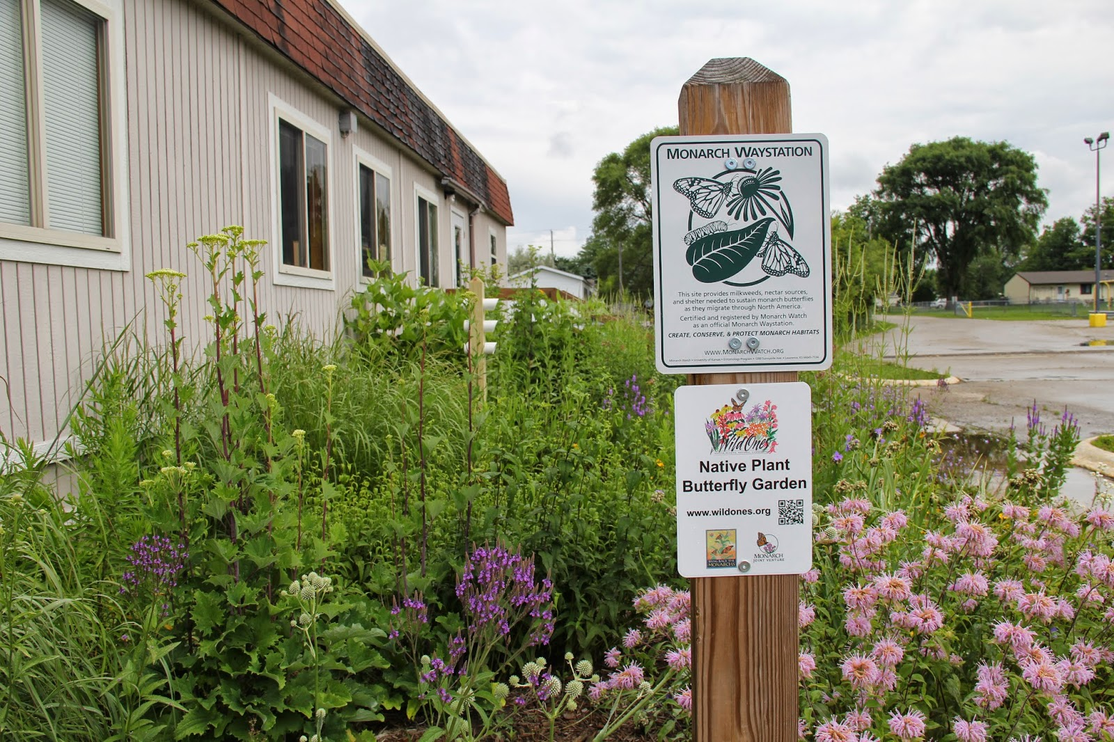 Incroyable New Native Plant Butterfly Garden Sign Displayed With Monarch Waystation  Sign