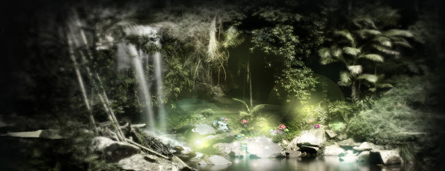 Nature Facebook Cover Photo