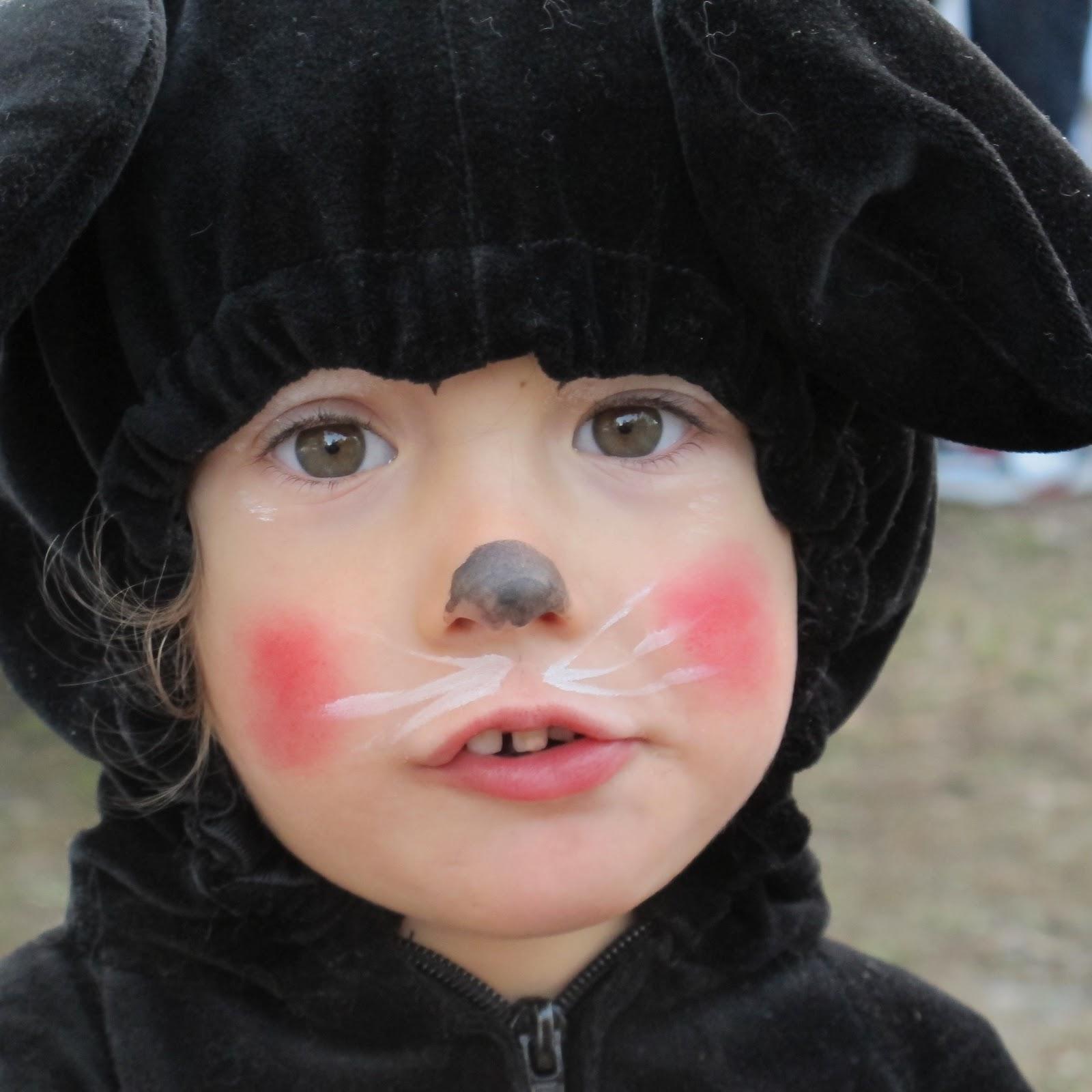 Помогите с костюмом дочке на новый год., макияж кошки