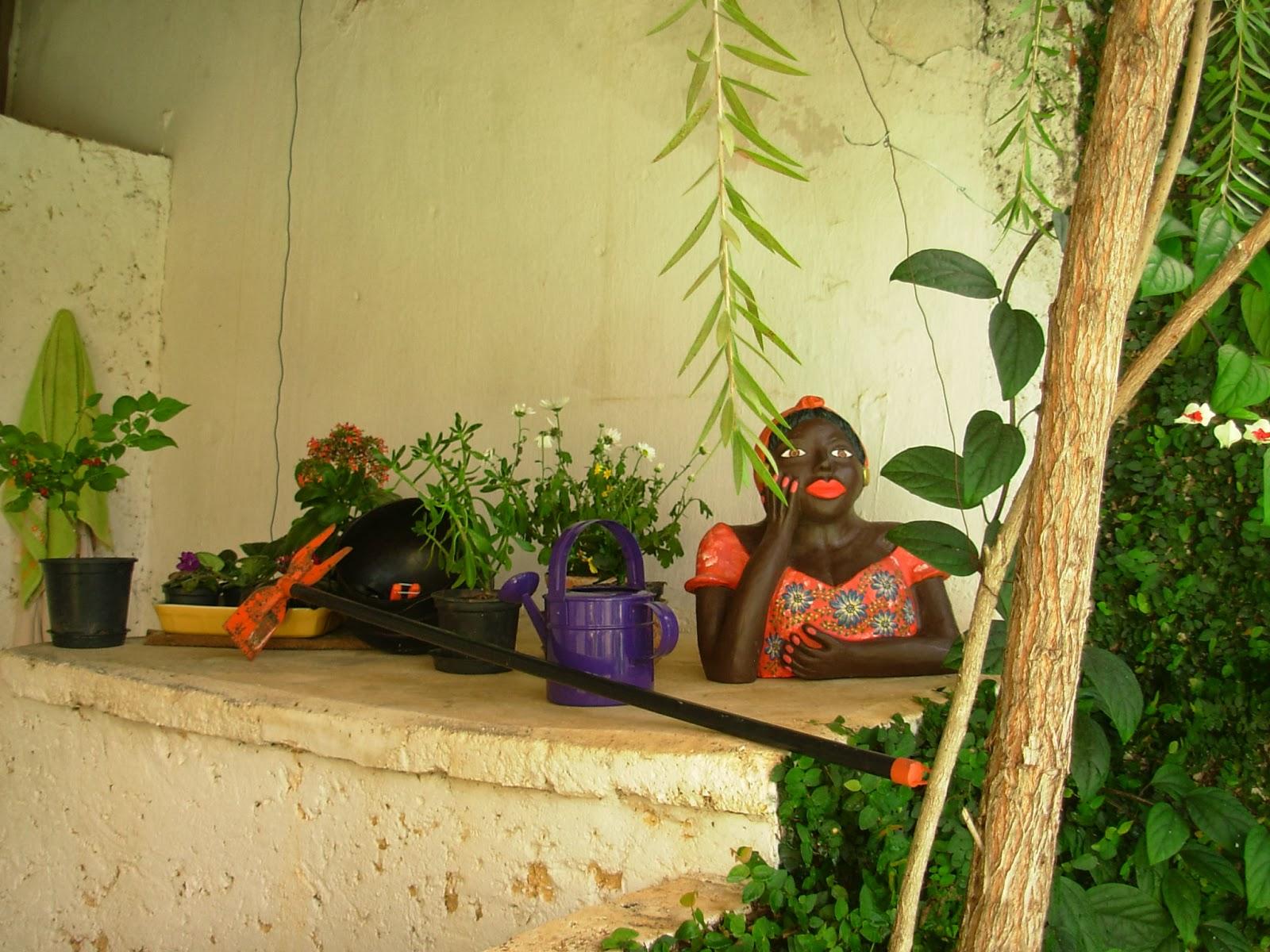 jardim em casa
