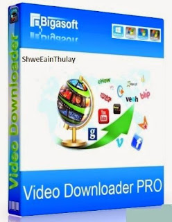 Bigasoft Video Downloader Pro Portable