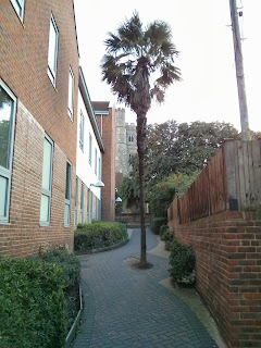 Rainham Palm Tree High Street