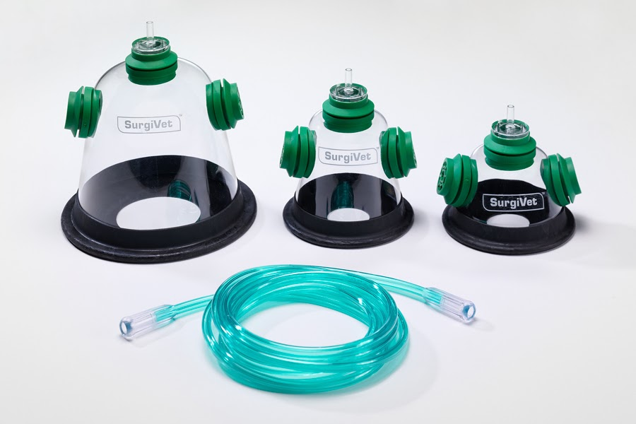 pet oxygen mask kits