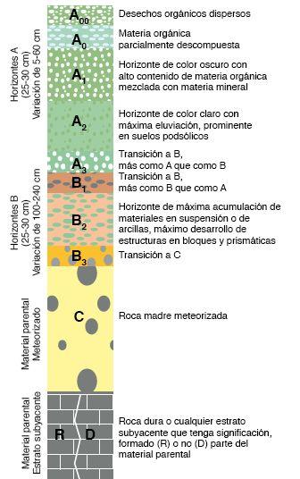 Geolicinio perfil del suelo for Perfil del suelo wikipedia