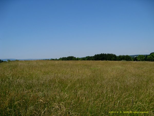 Image - summer_whispers.jpg - The hayfield behind the house ©2013 K. R. Smith
