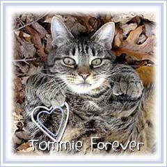 Tommie  RIP