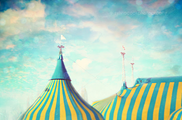 circus tent photography, nursery decor