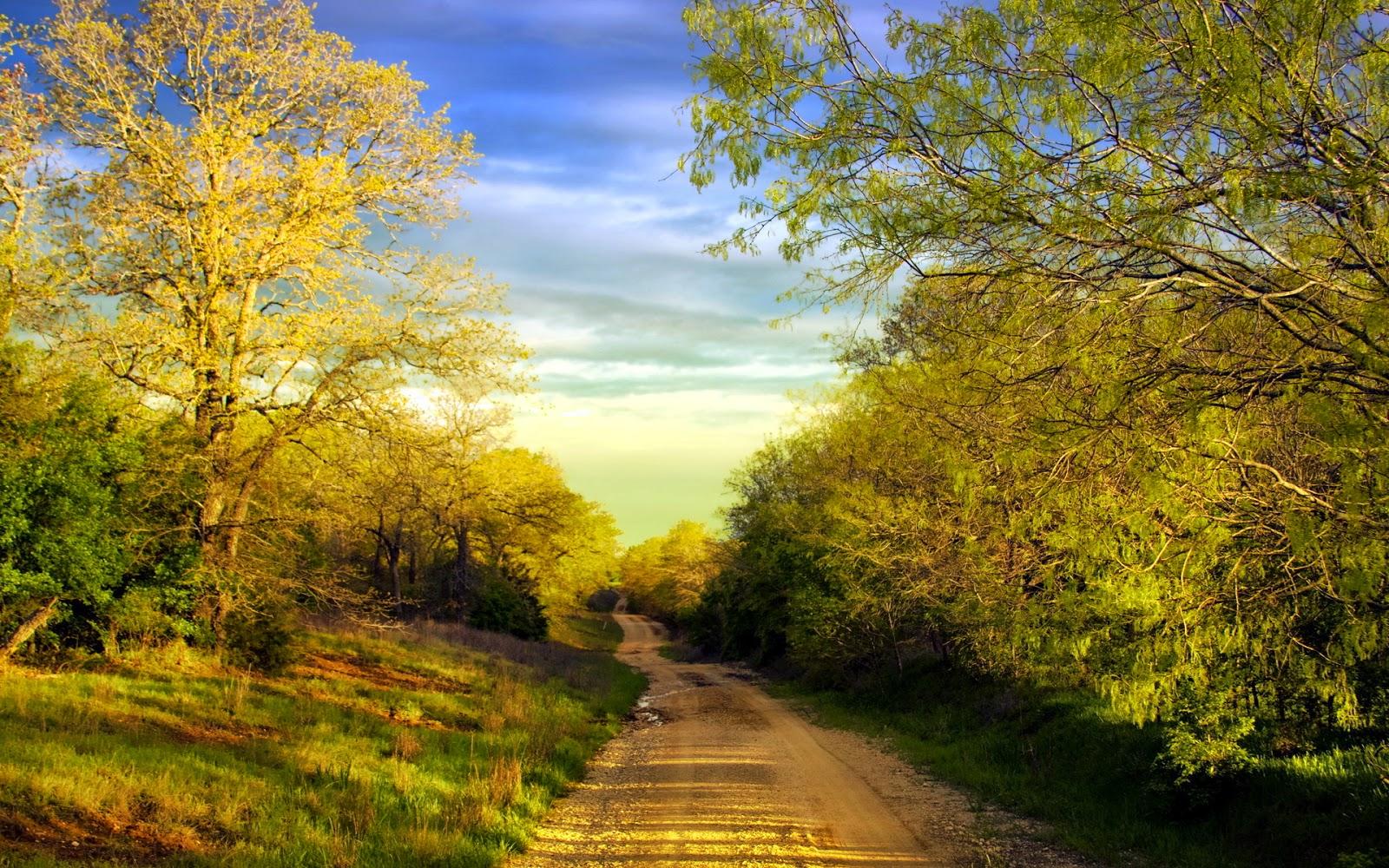 lane nature