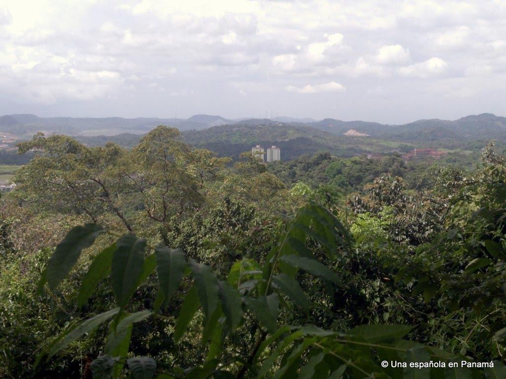parque natural nacional metropolitano bosques grua