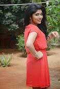 Samyuktha Hornad Glam pics-thumbnail-15