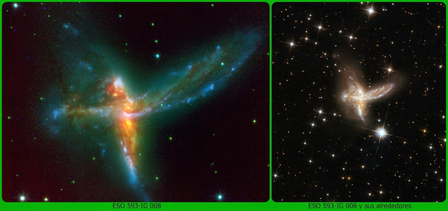 Paseando por el universo el ave m 225 s grande del universo