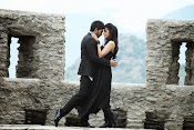 Race Gurram Movie Photos Gallery-thumbnail-6