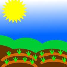 Gardenate planting guide...