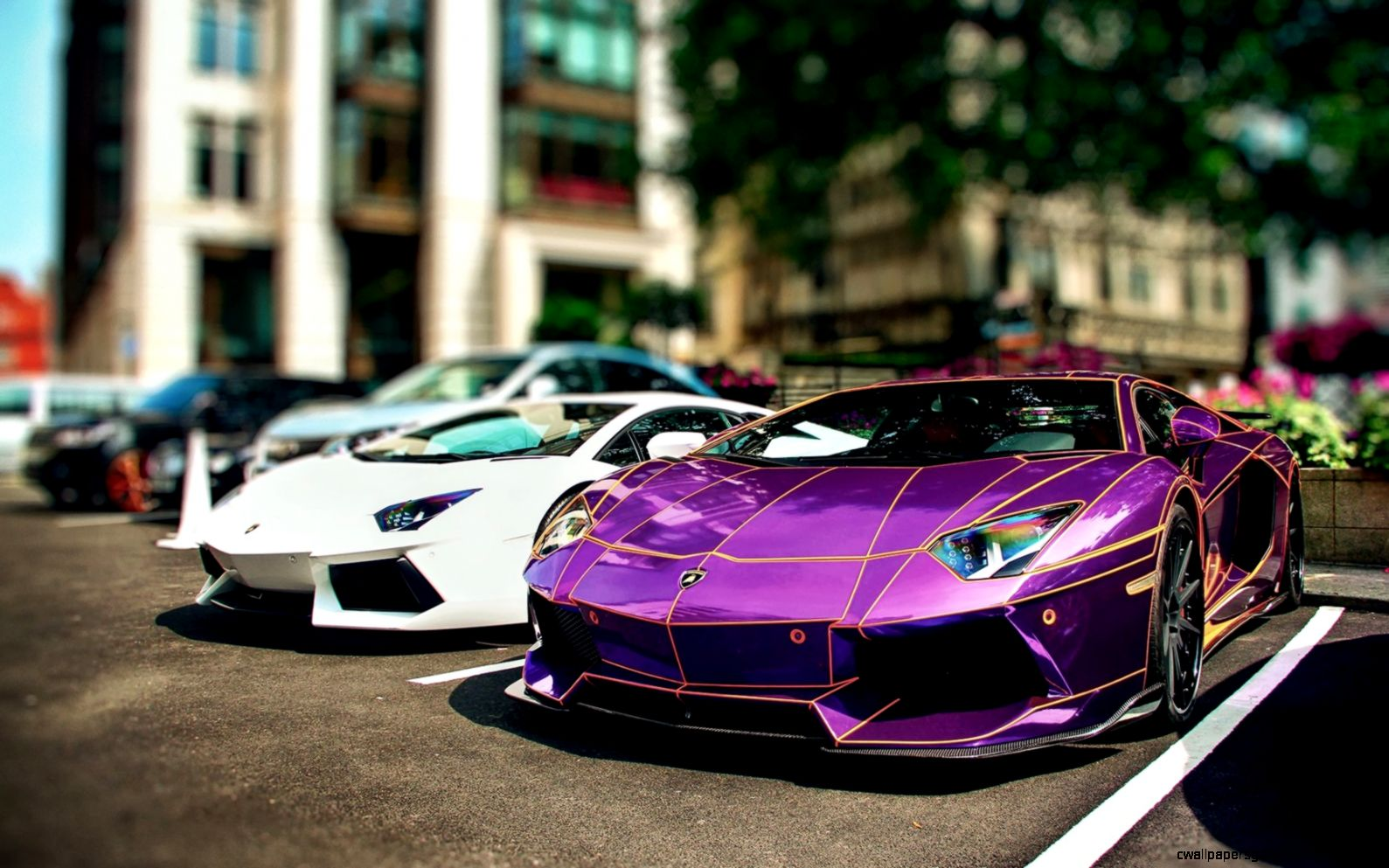 Purple TRON Lamborghini Aventador wallpaper   Free Wide HD Wallpaper