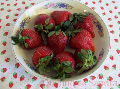 Frutillas y tela