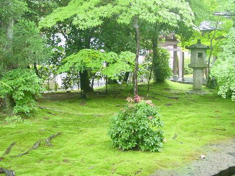 el jardn del templo ryoan ji en japn es uno de los jardines ms bonitos del mundo
