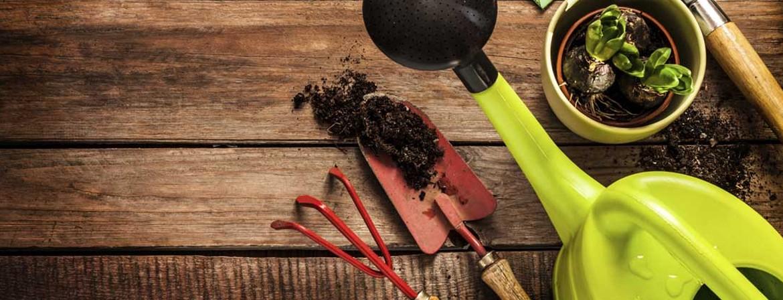 Profesjonalny sklep ogrodniczy online