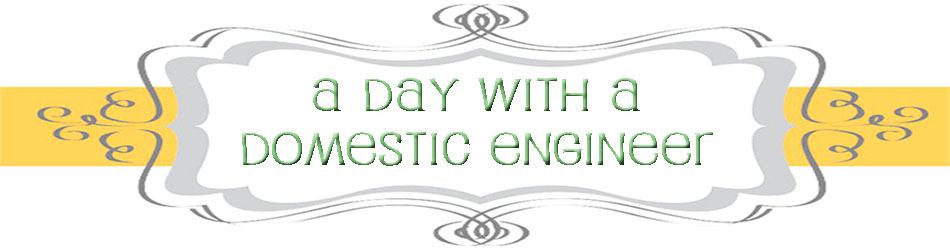 A Day with a Domestic Engineer