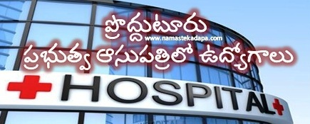 Jobs in Kadapa