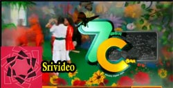 7 Aum Vaguppu C Pirivu 17-05-2013 Episode 256 | Vijay tv Shows 7C Serial 17th May 2013 at srivideo