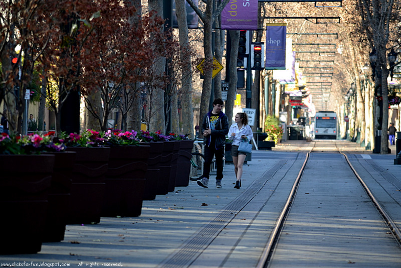 couples walks evenings strolls shades shadows trains downtown people trees crossing