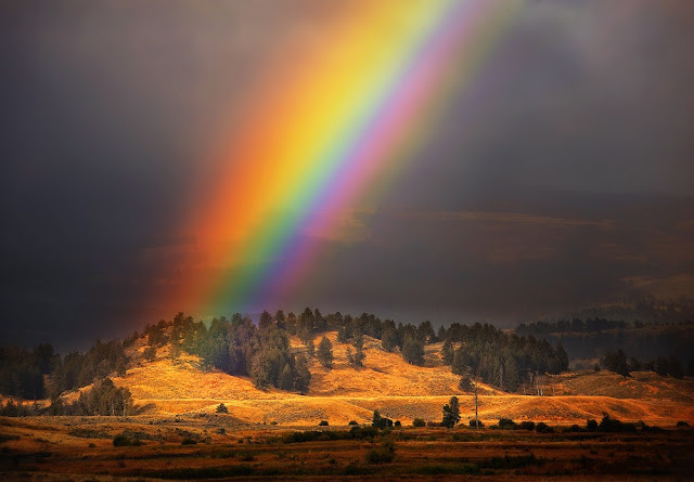 Rainbow Wallpapers Free Download
