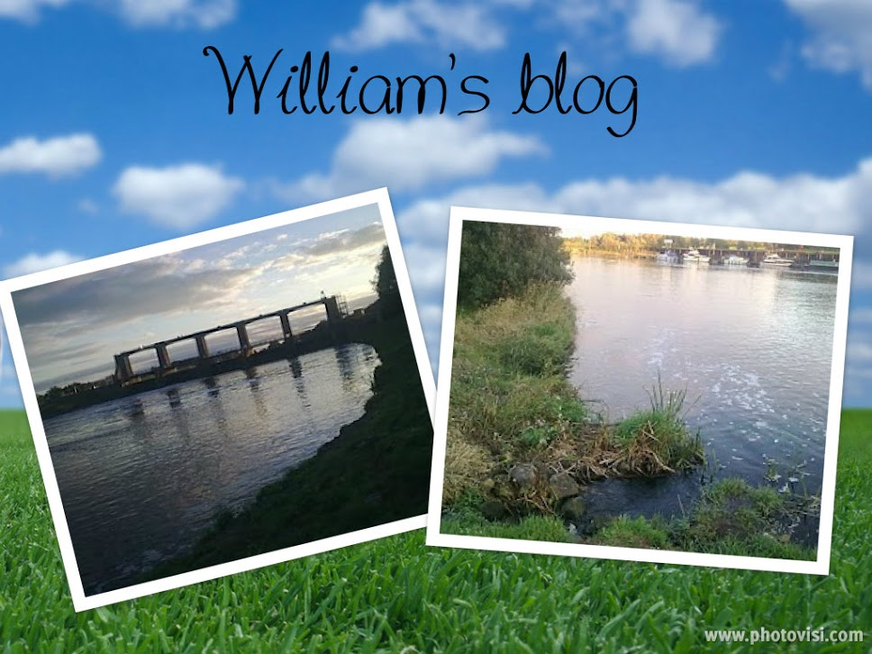 William's blog