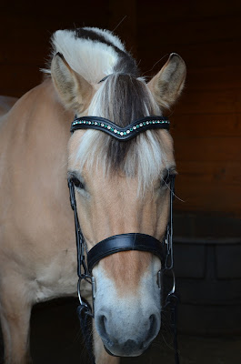 Flexible Fit Equestrian dressage bridle