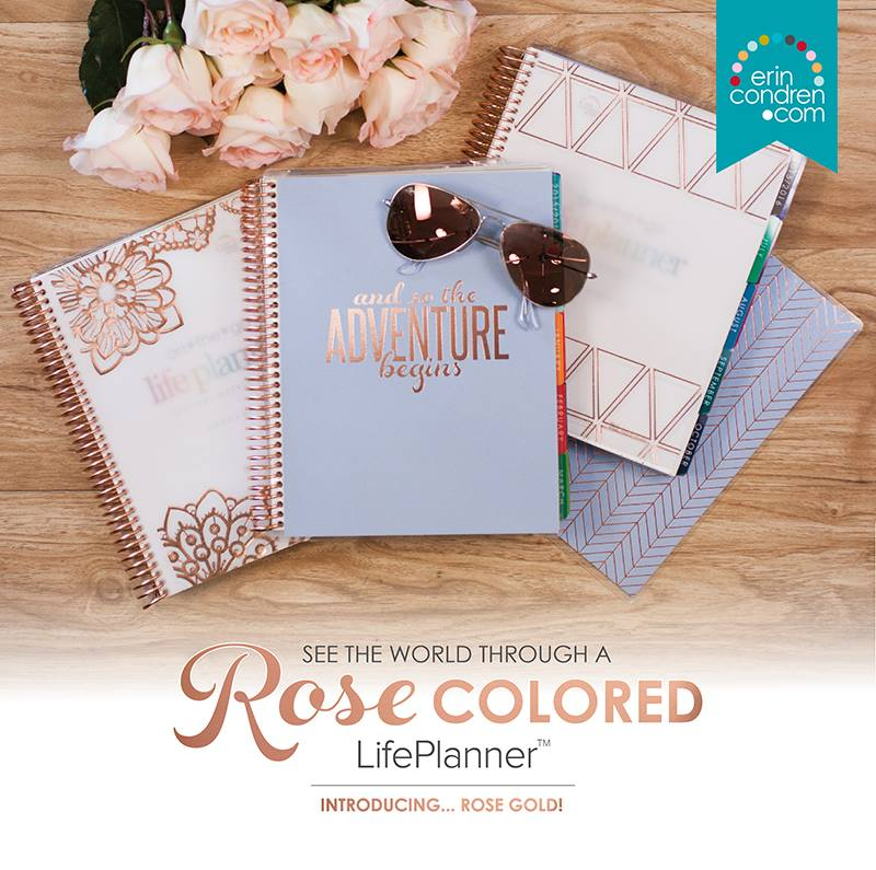 Love My Erin Condren Life Planner!